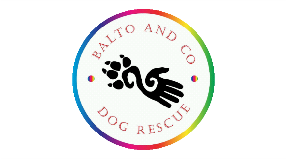 DoggyLottery_Balto and Co_Logo