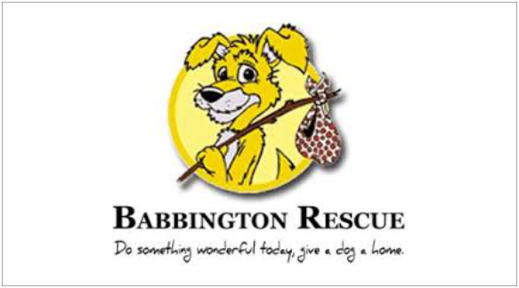 Logo_Babbington Rescue_feature