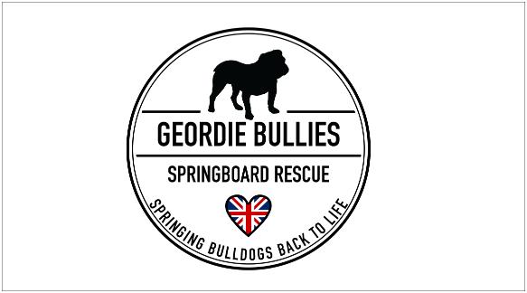 GeordieBulliesSpringboardRescue_logo_small