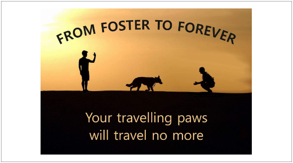 Foster to Forever_logo_small