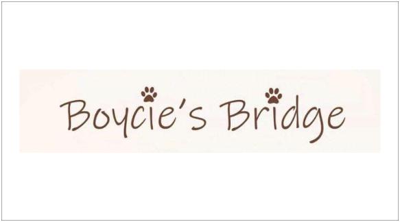 Round 11_Boycie's Bridge Rescue_Logo_smalls