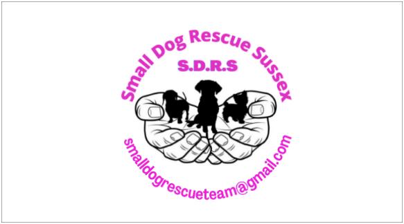 Round 11_DoggyLottery_Small Dog Rescue Sussex_Logo_small-min