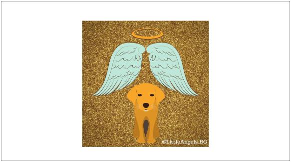 Little Angels Rescue BG_logo_small-min