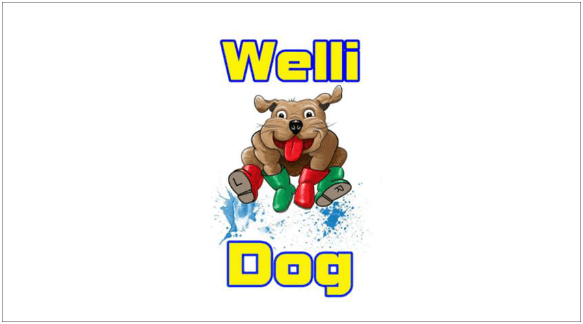 Wellingborough Dog Welfare_Destiny_logo small-min
