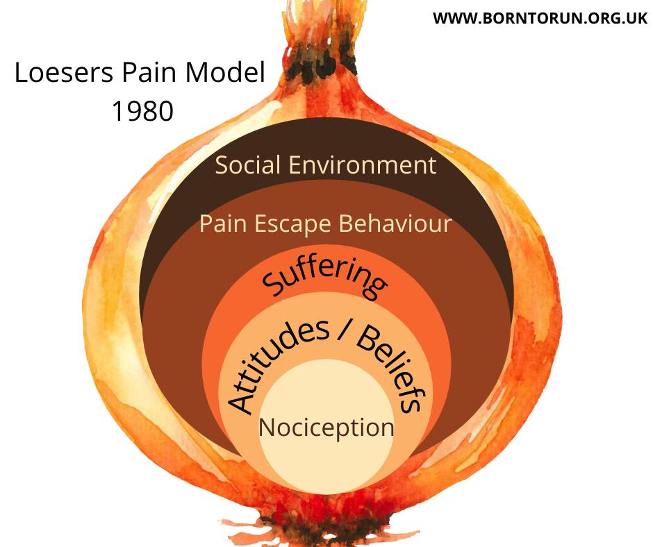 Pain Behaviour Loeser 1980